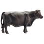"""Schleich""""Farm Life Black Angus Kuh"""""""